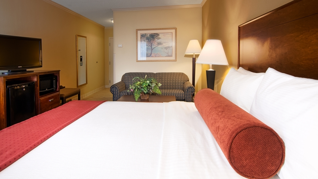 Best Western Plus Morristown Conference Center Hotel - This business king room features a sleeper sofa, work desk and chair, and microwave and mini refrigerator.
