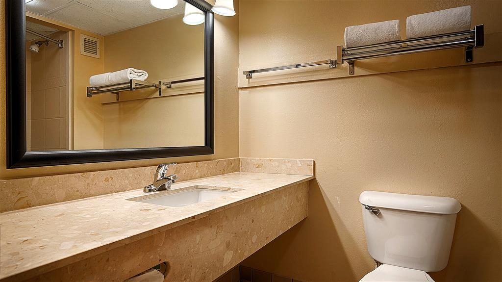 Best Western Plus Arbour Inn & Suites - Toutes les salles de bains disposent d'un très grand lavabo offrant assez de place pour pouvoir y poser vos affaires de toilette.
