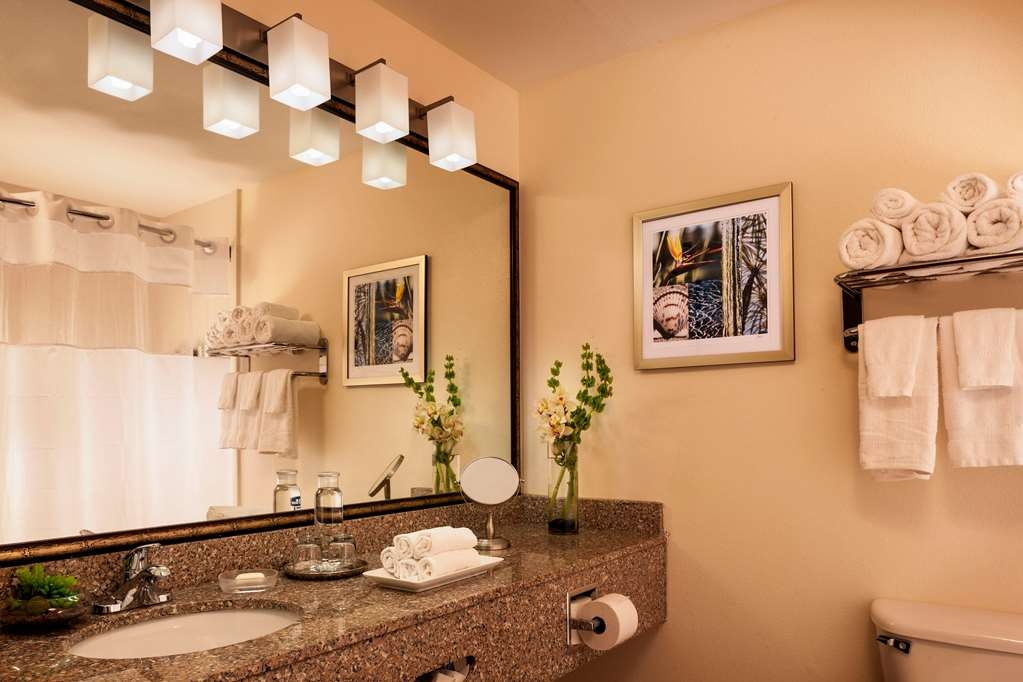 Best Western Plus Lewisville Coppell - Bagno