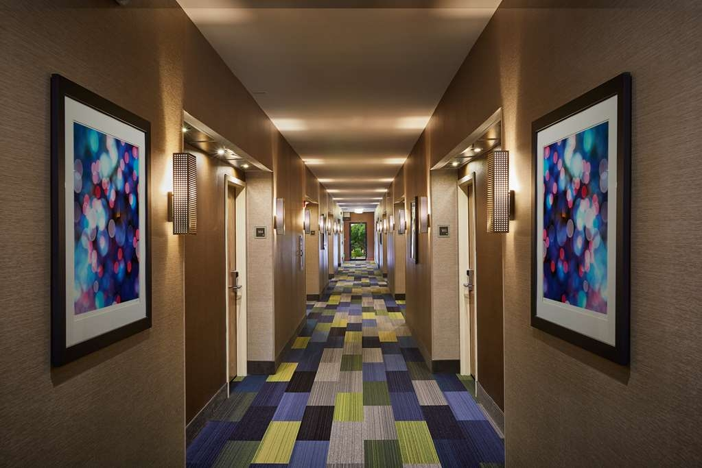 Best Western Plus Lewisville Coppell - Our spacious hotel is beautiful and modern throughout.