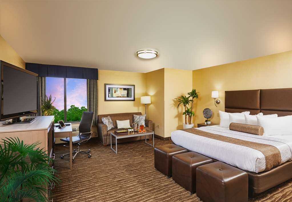 Best Western Plus Lewisville Coppell - Stretch out and relax in one of our King rooms.