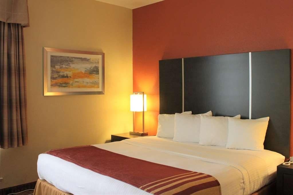 Best Western Plus North Houston Inn & Suites - Stretch out and relax in our King rooms.