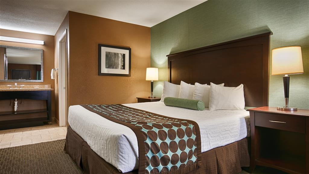 Best Western Huntsville Inn & Suites - Relax after a long day of travel in our standard king guest room.