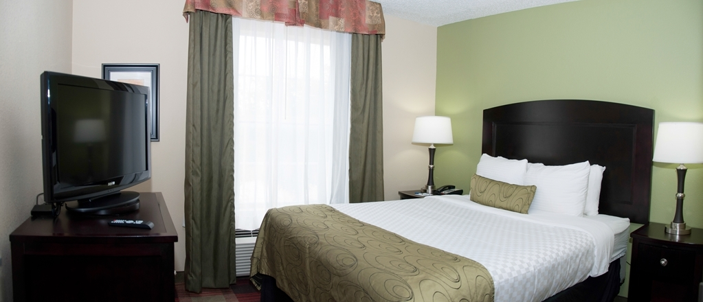 Best Western Plus Addison/Dallas Hotel - Upgrade yourself to our room with three queen size beds for added comfort during your stay.