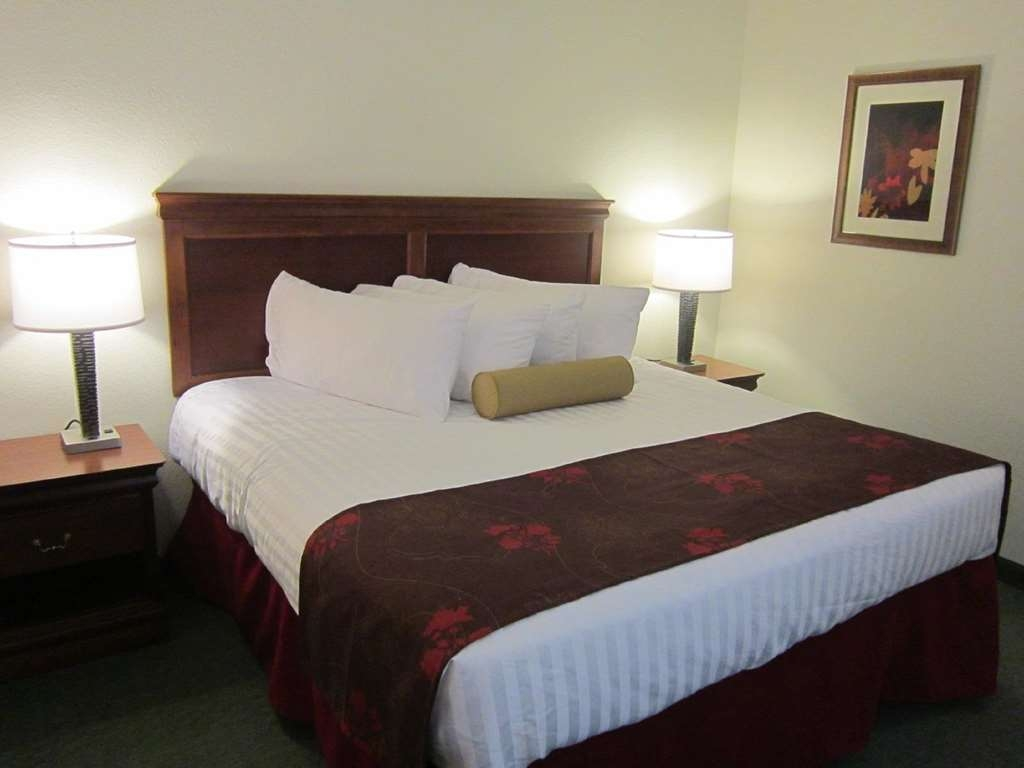 Best Western Czech Inn - This two queen guest room has all the comforts of home including a flat screen TV, microwave and refrigerator.