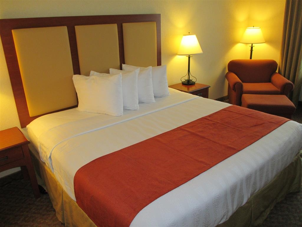 Best Western Plus Waxahachie Inn & Suites - Our king room is perfect for extended stays or a weekend getaway.