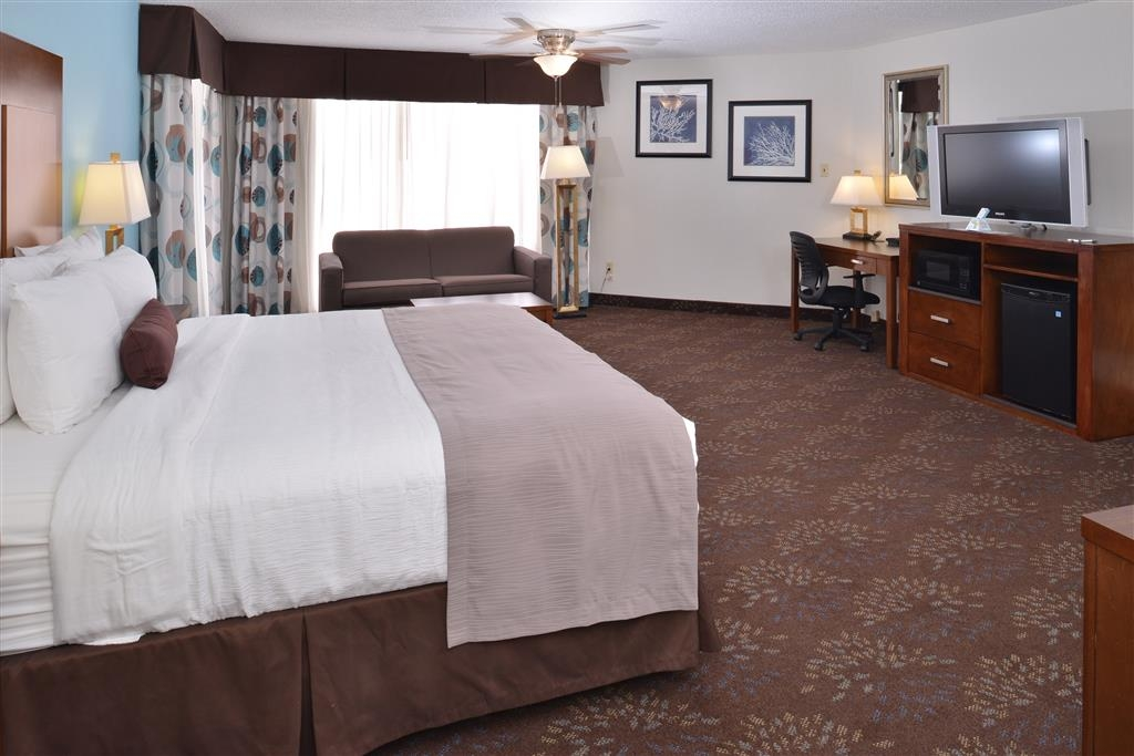 Best Western Plus El Paso Airport Hotel & Conference Center - Sleep the night away in our king guest room.