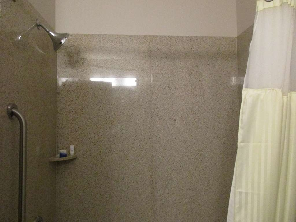 Best Western Plus Denver City Hotel & Suites - Salle de bain