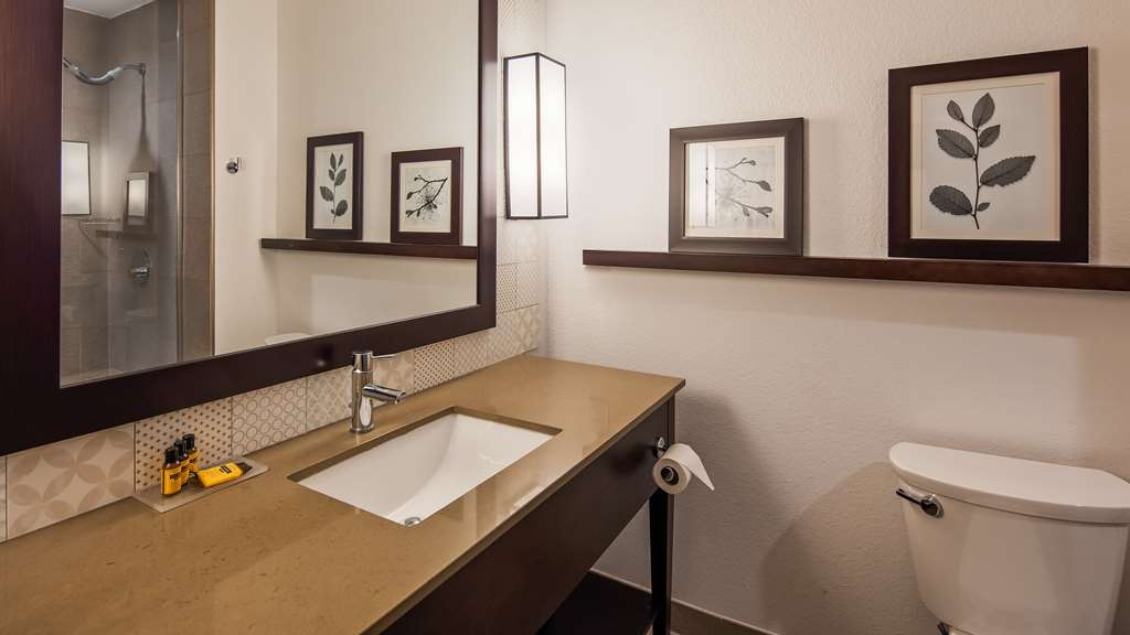 Best Western Plus Westheimer-Westchase Inn & Suites - Guest Bathroom