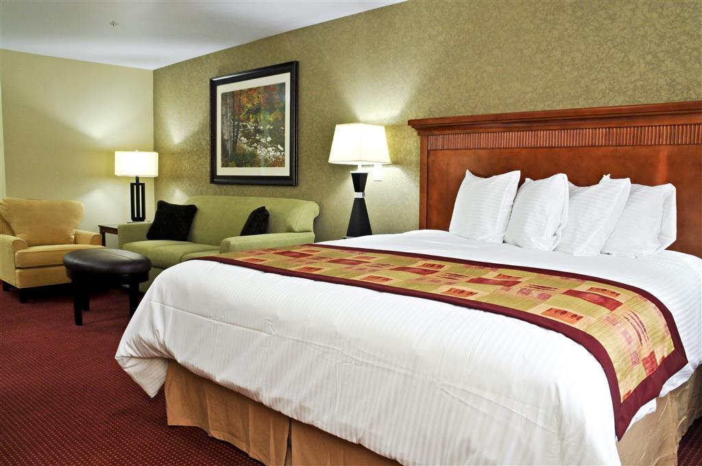 Best Western Plus Layton Park Hotel - Suite pequeña con cama extragrande