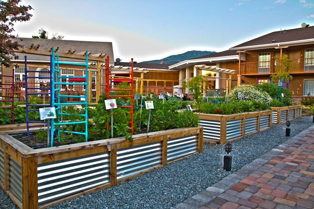 Best Western Plus Cedar City - Learn fun facts and helpful tips from our master gardeners.
