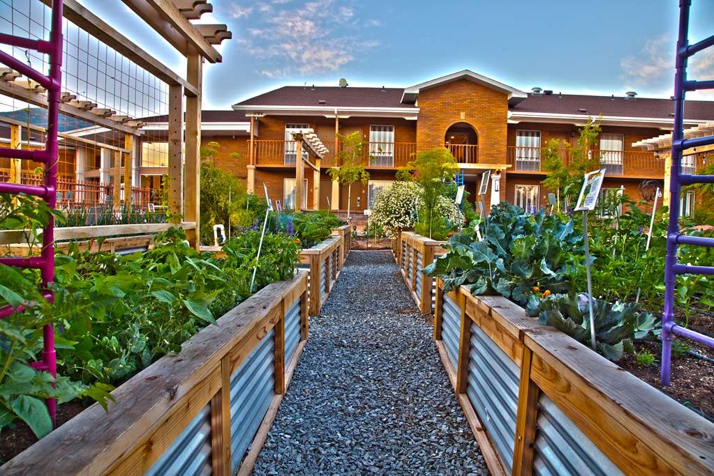 Best Western Plus Cedar City - Our fresh garden is home to various fruit and vegetables, free for any guest to pick from.