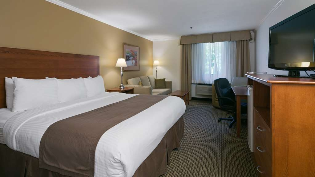 Best Western Tumwater-Olympia Inn - Relax in our spacious guest room with one king size bed.