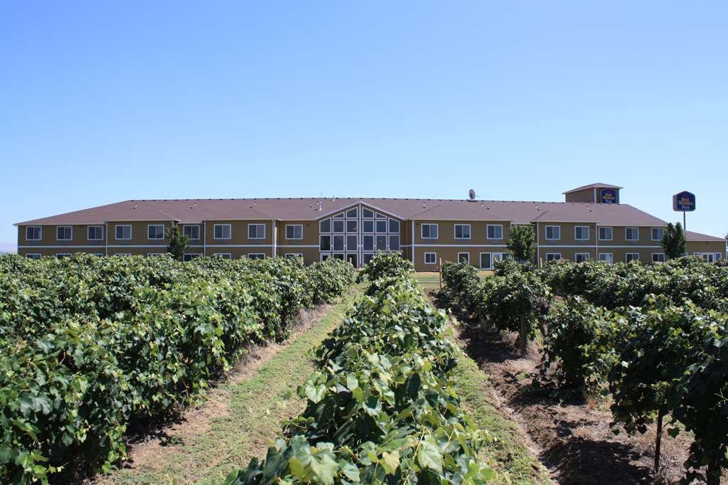 Best Western Plus Grapevine Inn - Facciata dell'albergo