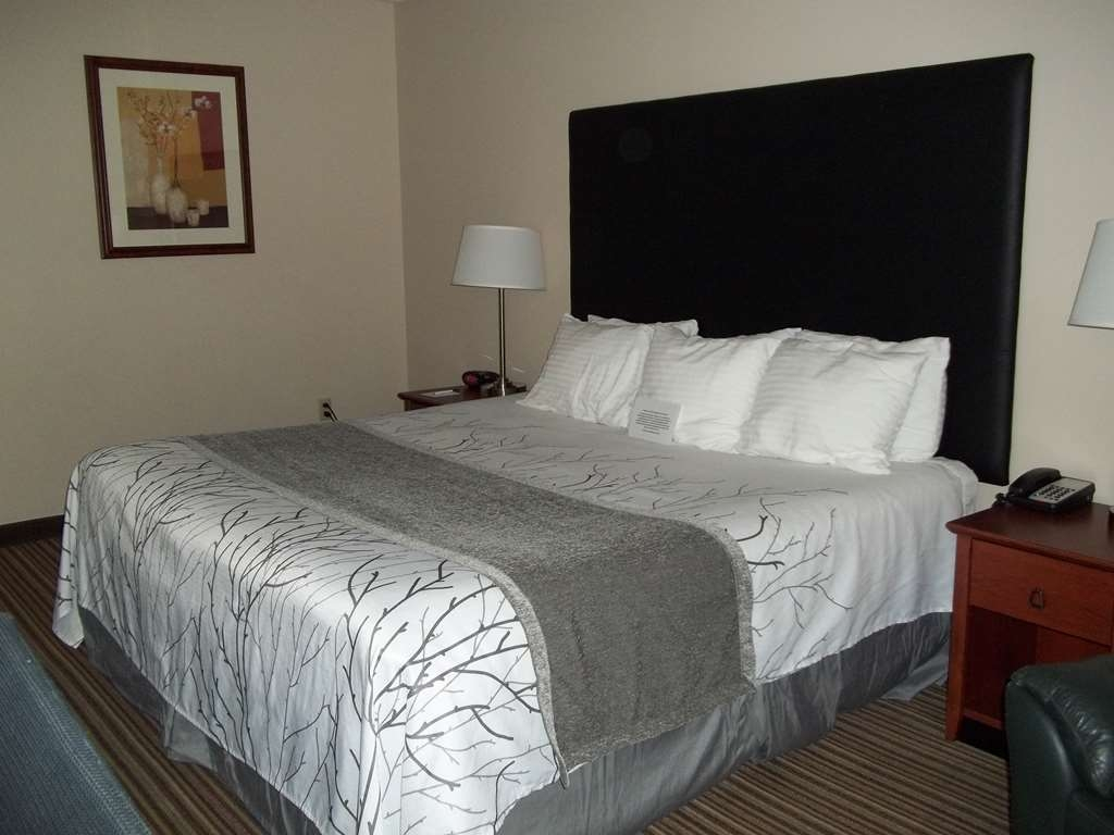 Best Western Park Oasis Inn - Relax after a long day of travel in our king guest room.