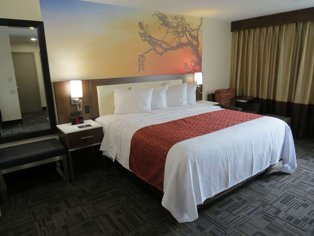 Best Western Premier Milwaukee-Brookfield Hotel & Suites - One King Size Bed Guest Room with Pool View
