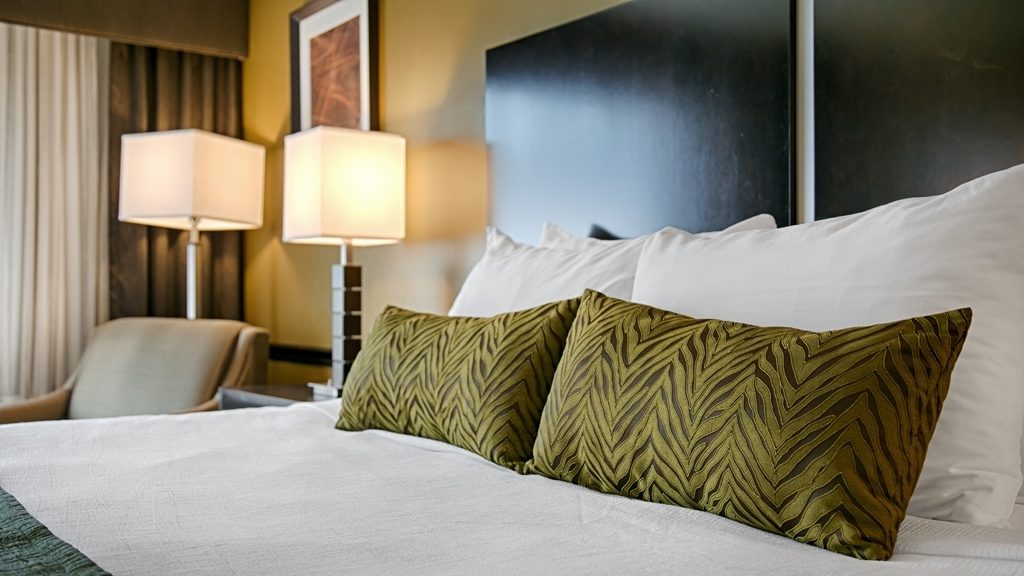 Best Western Canoga Park Motor Inn - King Guest Room
