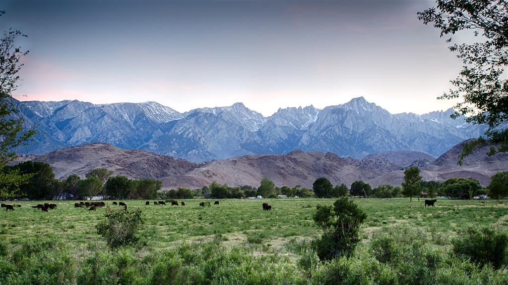 Best Western Plus Frontier Motel - Wake up to the best view in Lone Pine, CA.