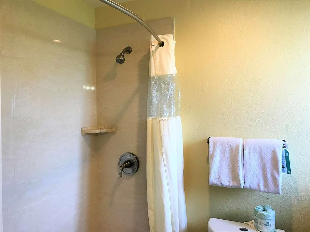Best Western Park Crest Inn - Enjoy getting ready in the morning with the Guest Room Shower.