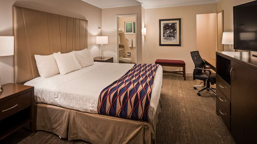 Best Western Garden Inn - Our single Queen bed guest rooms offer affordable luxury.