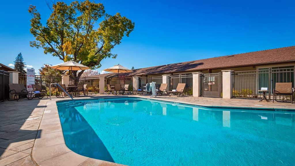 Best Western Garden Inn - Our brand new Garden area pool is waiting for your enjoyment.