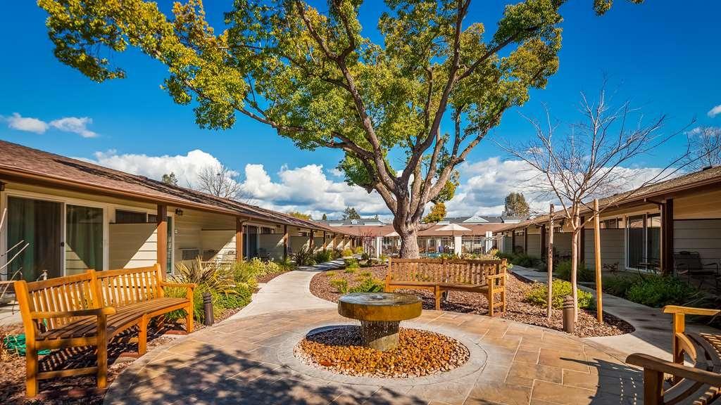 Best Western Garden Inn - Outdoor Area