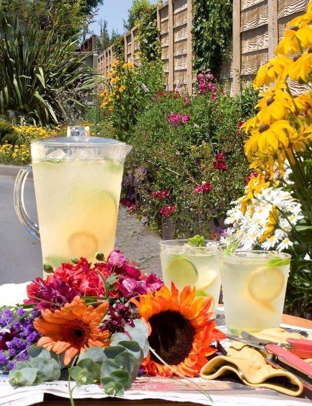 Best Western Garden Inn - Piscina
