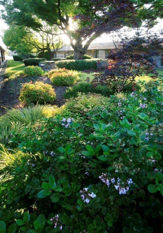 Best Western Garden Inn - No matter the time of year, you'll love the Best Western Garden Inn.