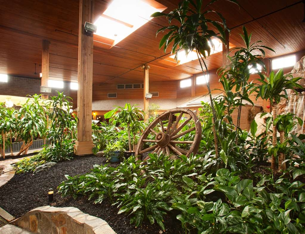 SureStay Hotel by Best Western Chilliwack - Tropical Atrium Garden