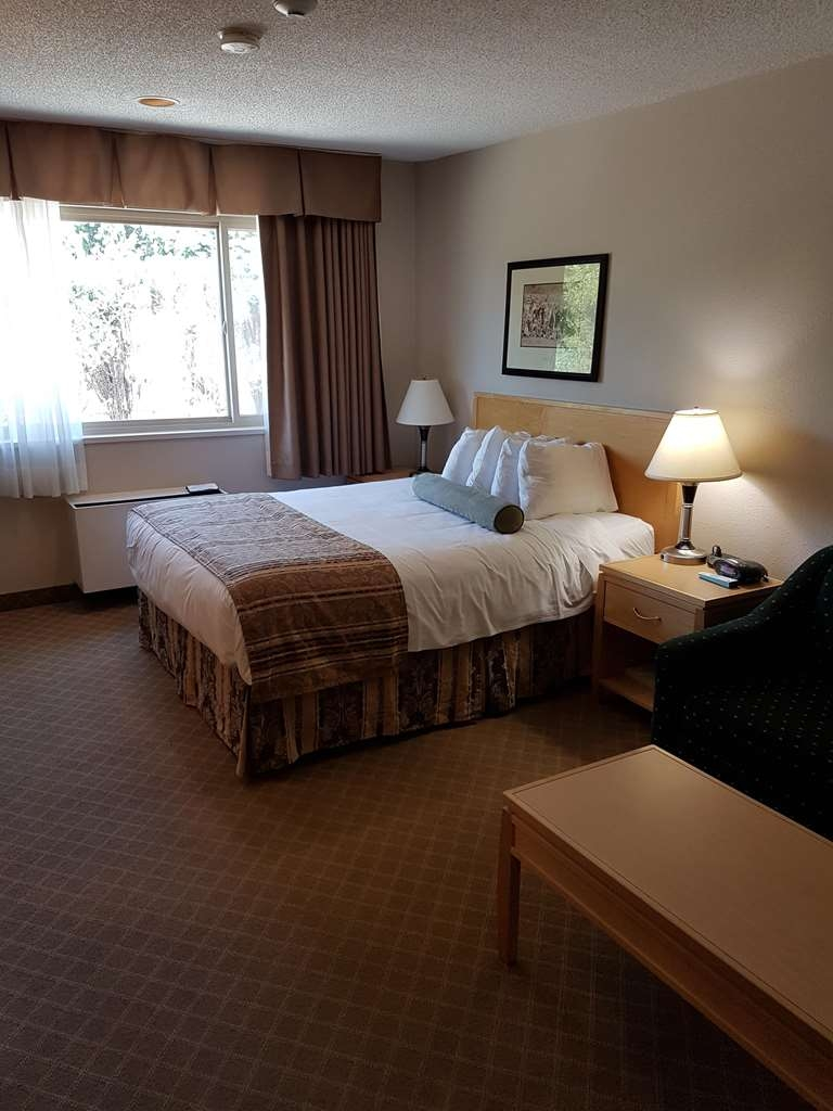 SureStay Plus Hotel by Best Western Coquitlam - Indulge yourself in our warm, welcoming and inviting queen room with a sofabed.