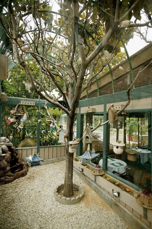 Best Western Plus Encina Inn & Suites - Bird Aviary