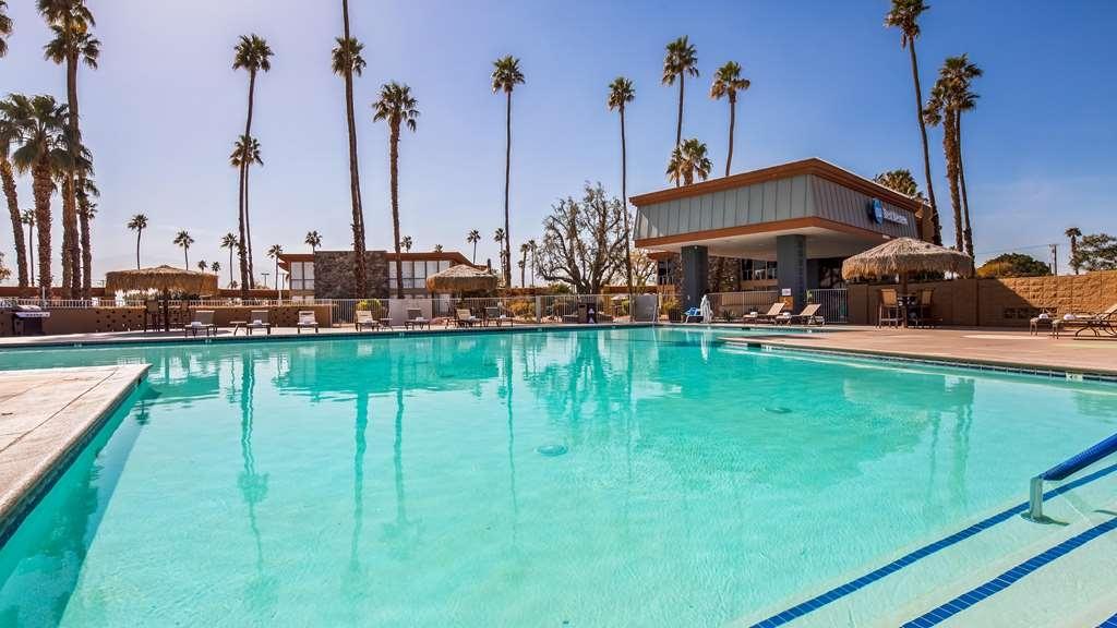 Best Western Date Tree Hotel - Pool view