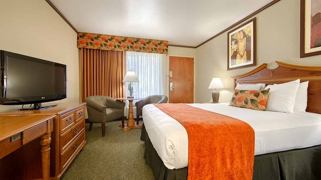 Best Western Seven Seas - Make yourself at home in our Queen guest room.