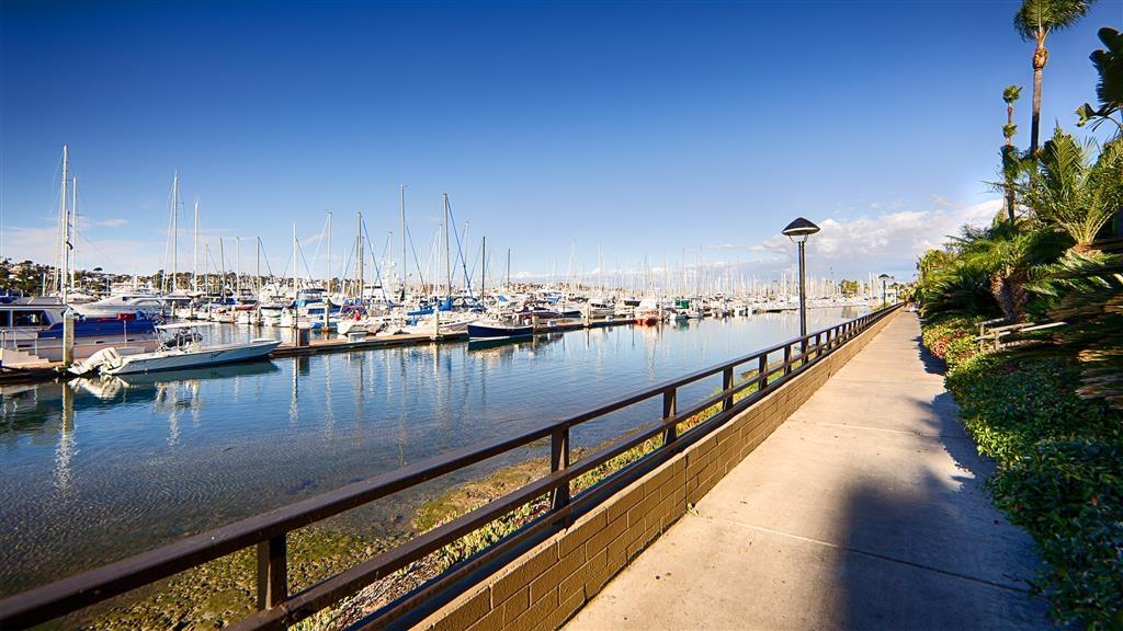 Best Western Plus Island Palms Hotel & Marina - Take advantage of three miles of waterfront walking/jogging paths.