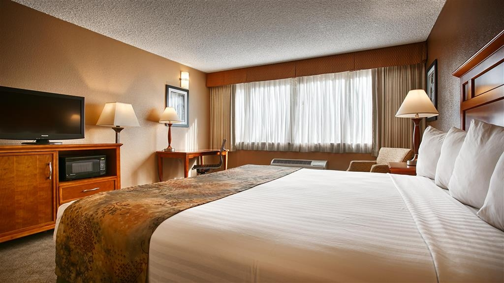 Best Western Valencia Inn - The king bed guest room can comfortably sleep up to two guests.