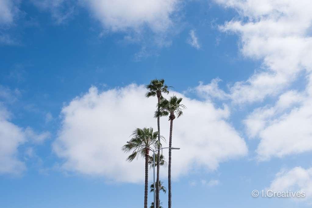 Best Western Plus Bayside Inn - Sunny Southern California!