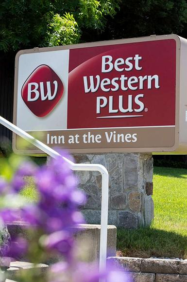 Best Western Plus Inn at the Vines - Vista Exterior