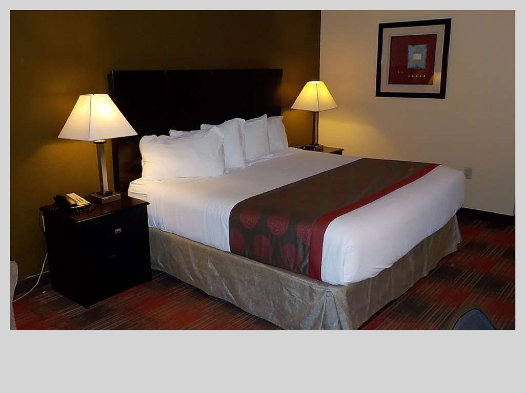 SureStay Plus Hotel by Best Western Nashville Southeast - King Guest Room