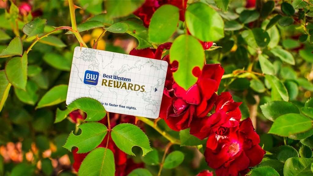 SureStay Hotel by Best Western Falfurrias - Rewards Program