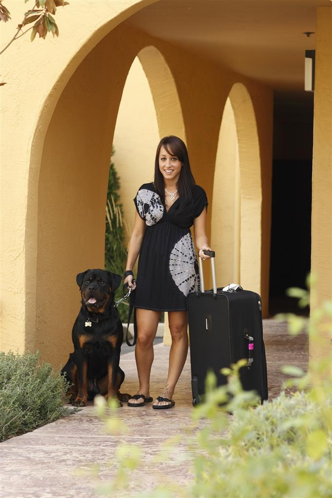 Best Western Dry Creek Inn - We are a pet friendly hotel, please call the hotel directly for full details.