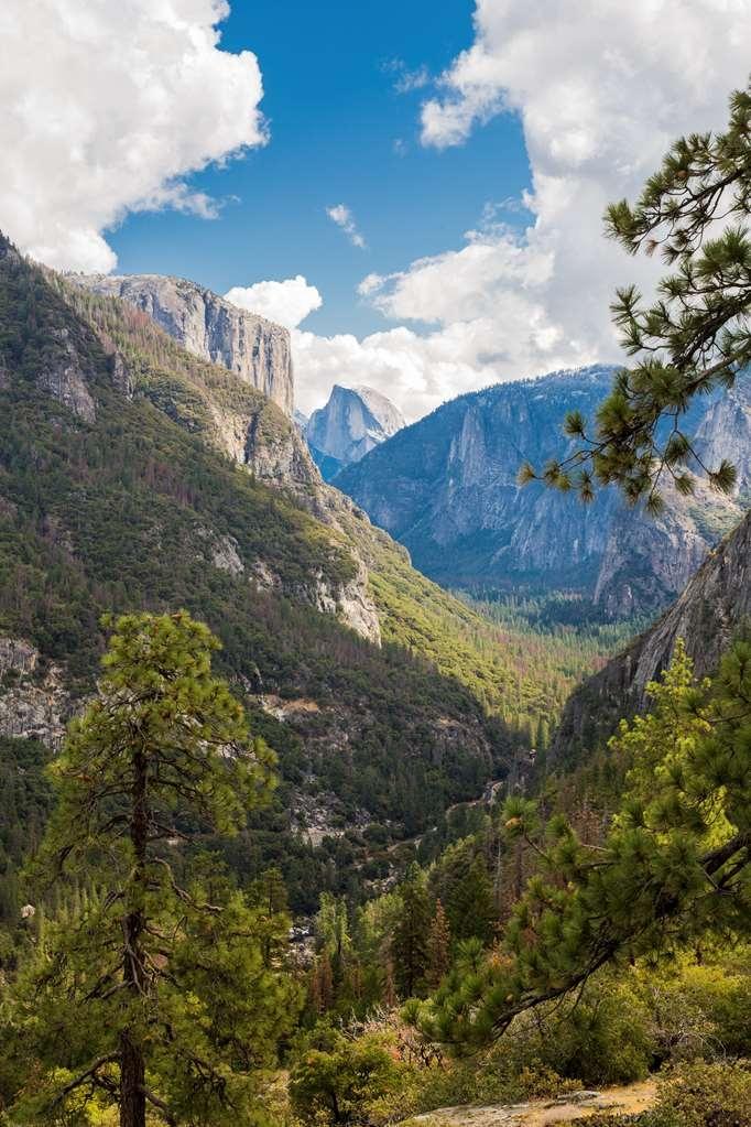 Best Western Plus Yosemite Gateway Inn - yos valley vertical