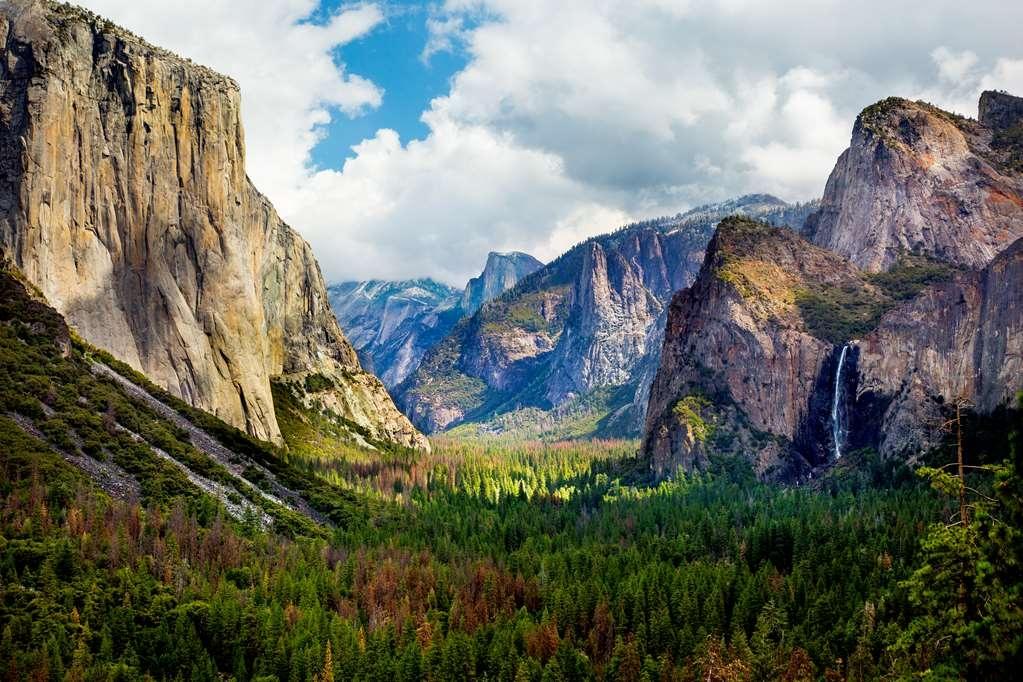 Best Western Plus Yosemite Gateway Inn - Yosemite Valley