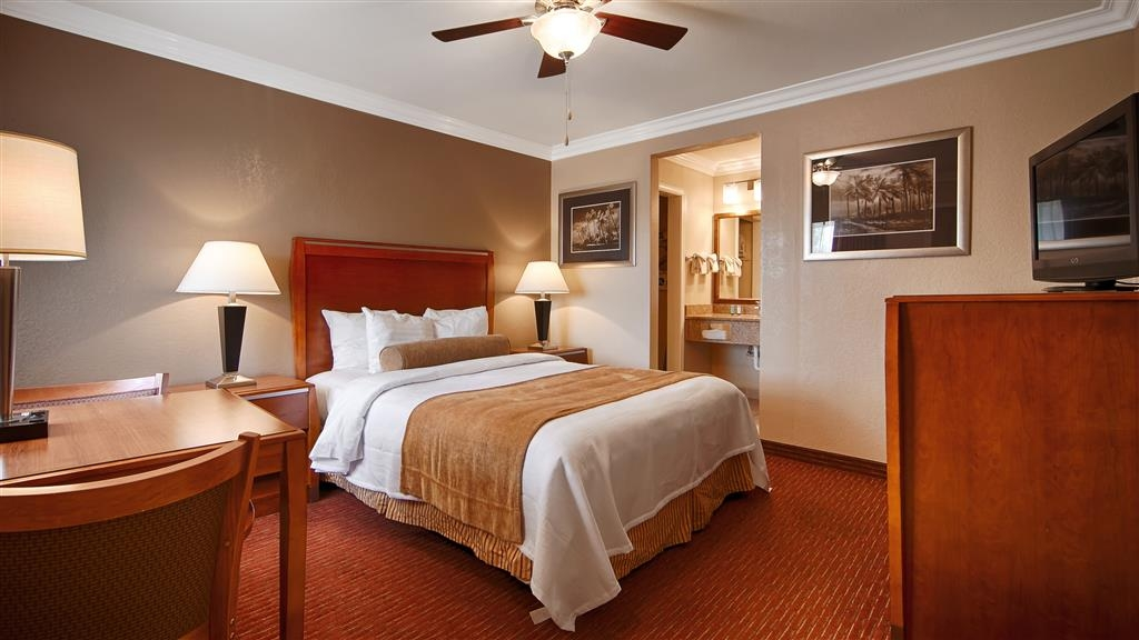 Best Western Tradewinds - At the end of a long day, relax in our clean, fresh, One Queen Bed Guest Room