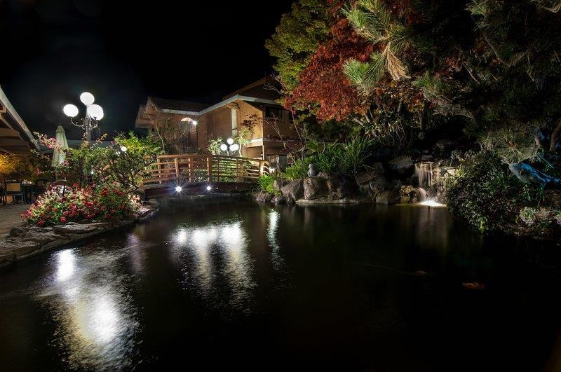 Best Western Seacliff Inn - Make sure you check out our Koi Pond when you stay with us!