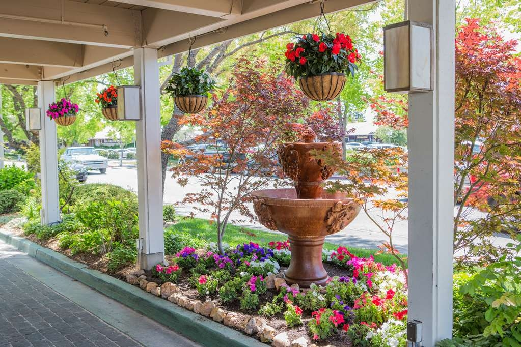 Best Western Sonoma Valley Inn & Krug Event Center - Enjoy the beautiful landscaping as you enter into the hotel.