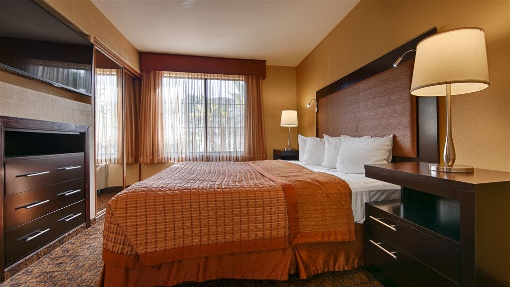 Best Western Escondido Hotel - Make yourself at home in our king guest room.