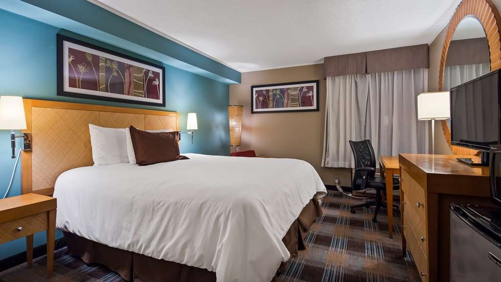 SureStay Plus Hotel by Best Western Jasper - We offer a variety of king rooms from standard to mobility accessible.