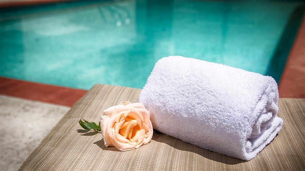 Best Western Plus Country Park Hotel - Poolside