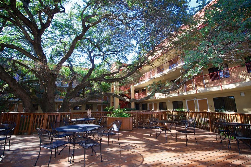 Best Western Plus Orchid Hotel & Suites - Außenansicht