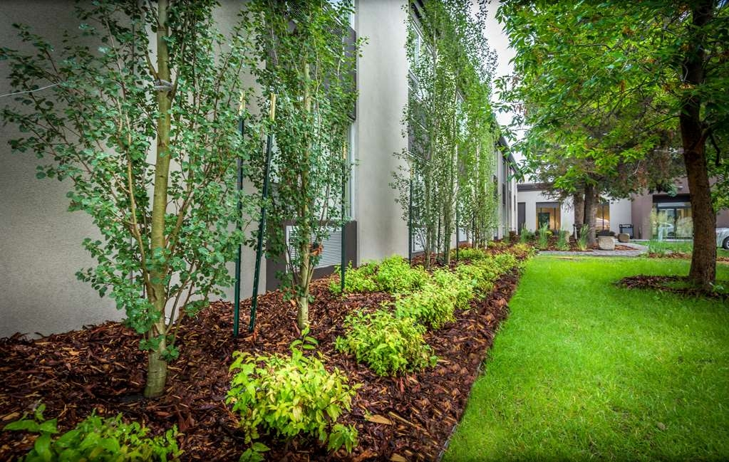 Best Western Premier Denham Inn & Suites - Newly Landscaped